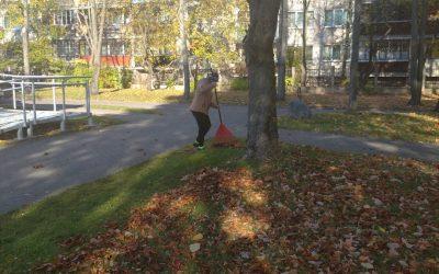 Džiaugiamės rudeniu
